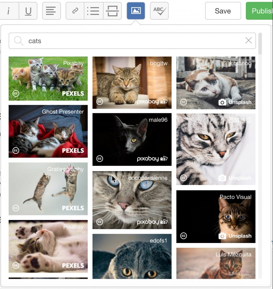 Cat Search - SiteContent Images