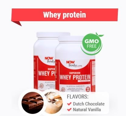 What is Now LIfestyle_Whey Protein