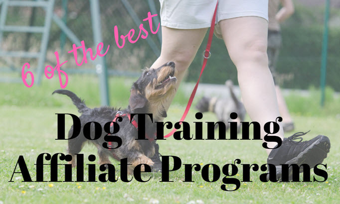 dog training affiliate programs