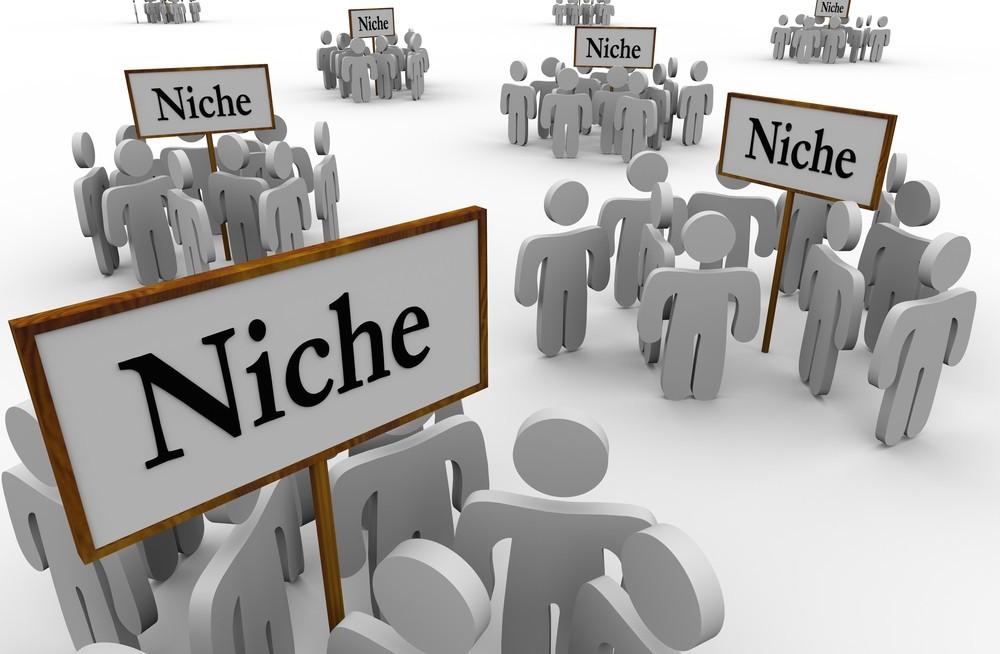 what is a niche in internet marketing