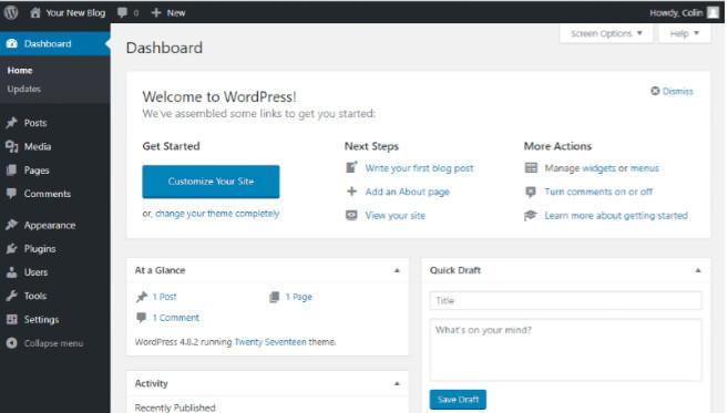 Blog post creatng interface in WordPress