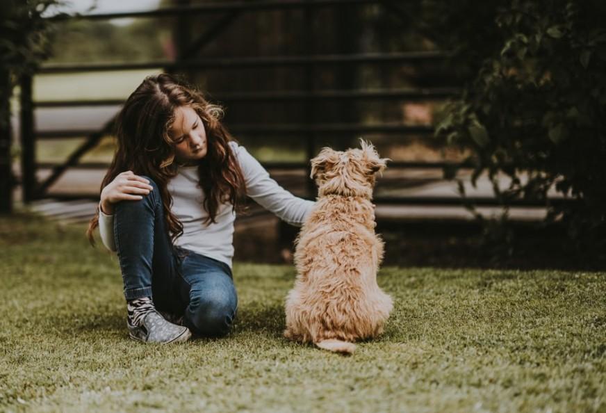 Lady cuddlinga dog to signify Dog sitting and walking to make money online without investment