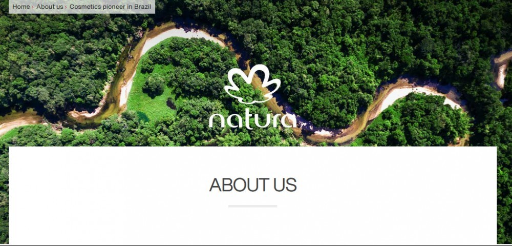 River meandering through a forest as to say is natura the best mlm program: a review