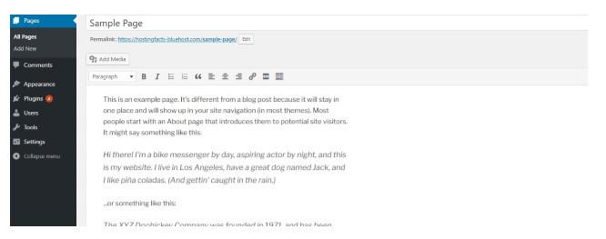 main WordPress page editing screen