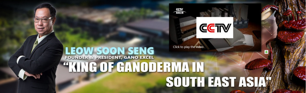 Gano Excel International official website homepage showing the founder Leow Soon Seng with the words 'King of Ganoderma in South East Asia'