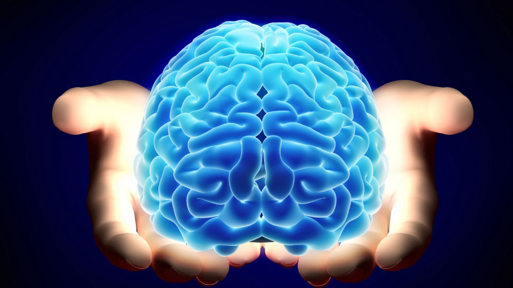 what is millionaires brain academy about?
