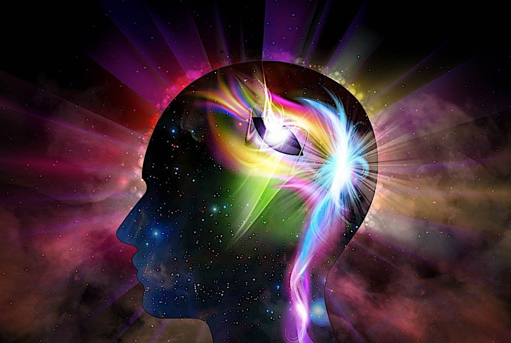 The Law Of Attraction For Beginners