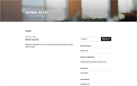 WordPress Demo Theme - How To Build A WordPress Website