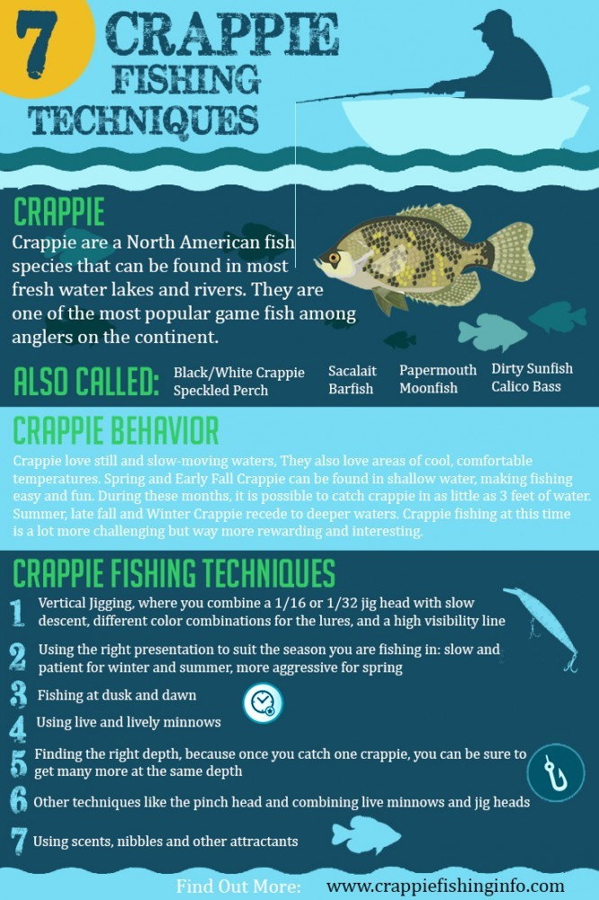 crappie fishing techniques Infographic