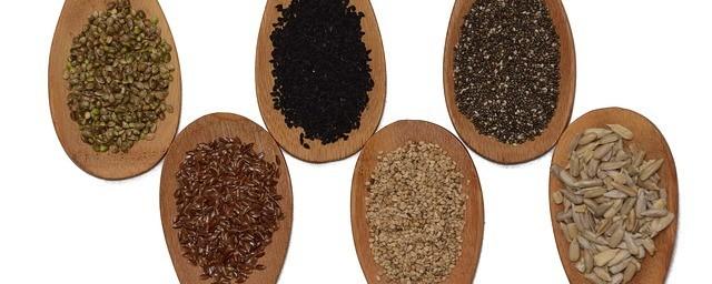 Super Healthy Food seeds