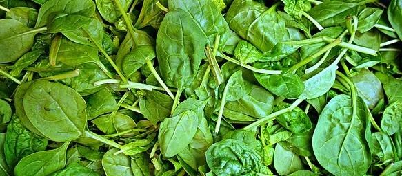Super Healthy Food Spinach