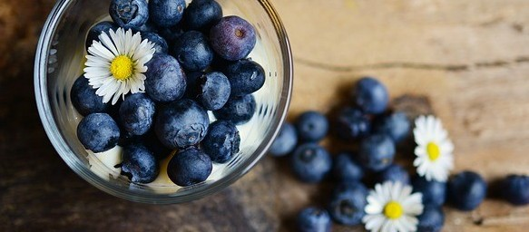 Super Healthy Food blueberry