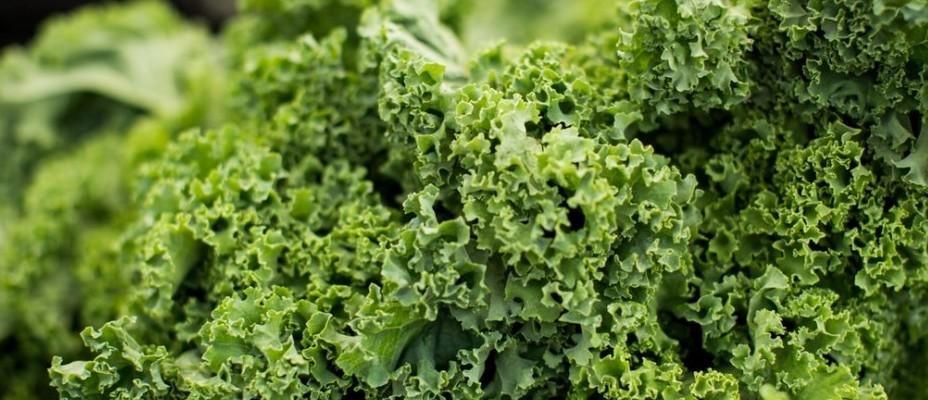detox salad recipes kale
