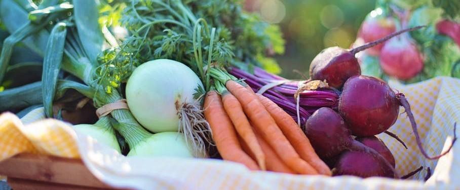 detox salad recipes root vegetables