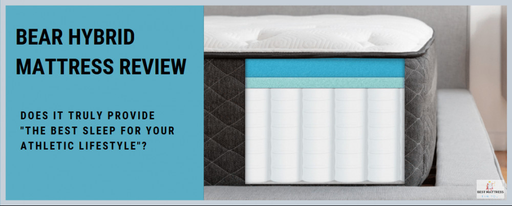 Bear Hybrid Mattress Review - Cover Image