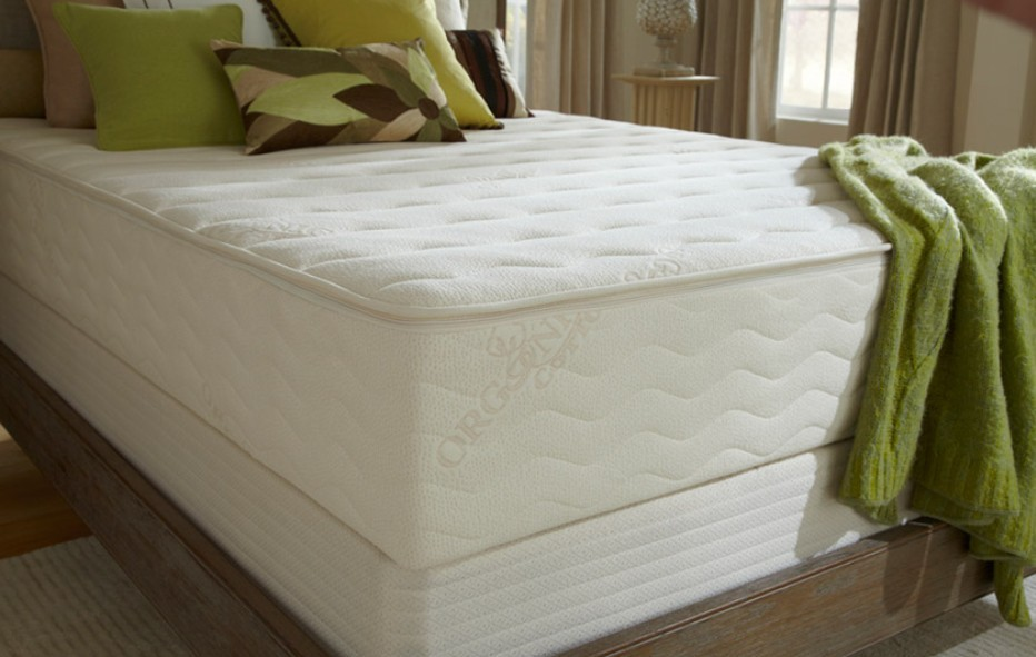 plushbeds latex mattress