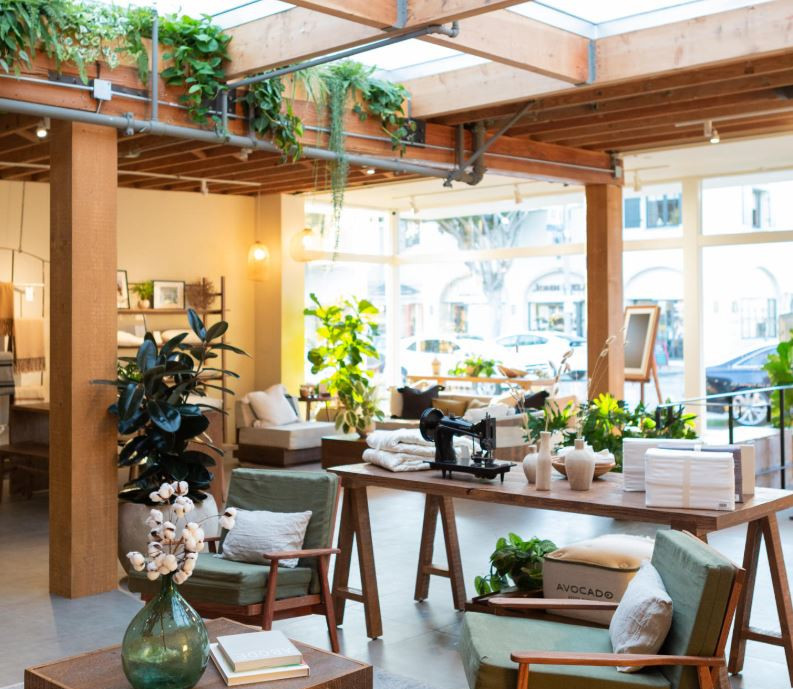 Avocado Mattress Showroom - A Look Inside