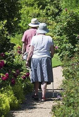 balance exercises for the elderly