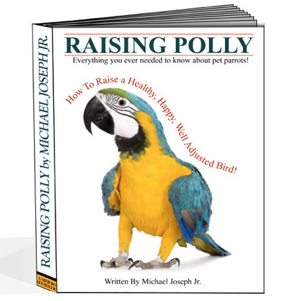 training parrots