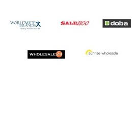 Dropshipping Wholesale Suppliers-paid source