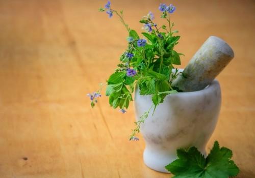 Sell herbal medicines