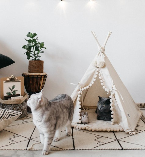 amazing teepee cat bed, great for cat themed bedroom.