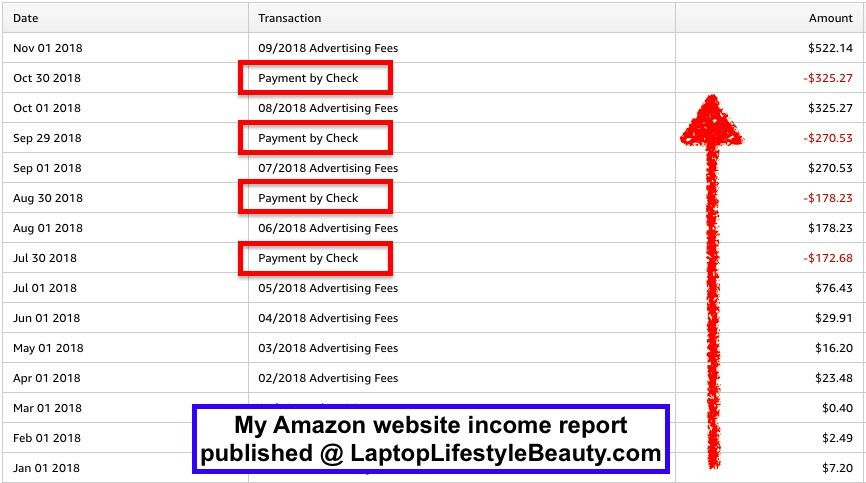 The screenshot of earnings made with my Amazon niche site