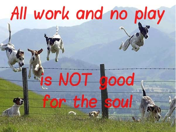 Image result for quotes about all work and no play
