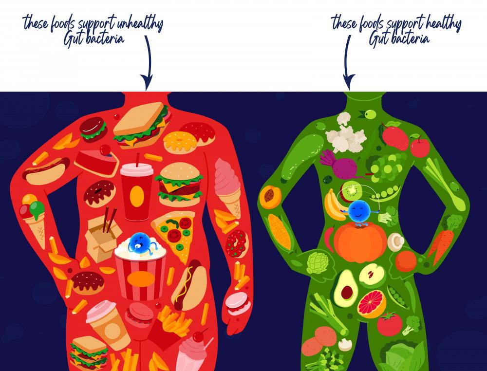 gut-health-food