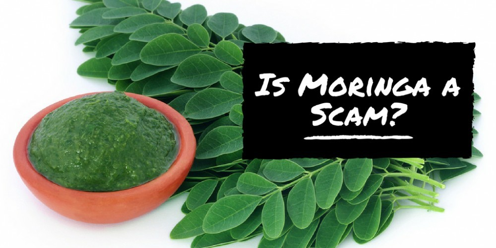 Is Moringa a Scam