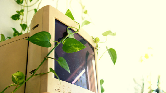 Benefits of Electronic Recycling