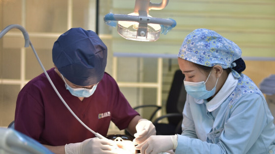 Treatment of Oral Cancer