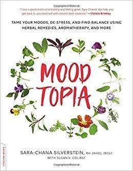 Moodtopia Book Sara-Chana Silverstein
