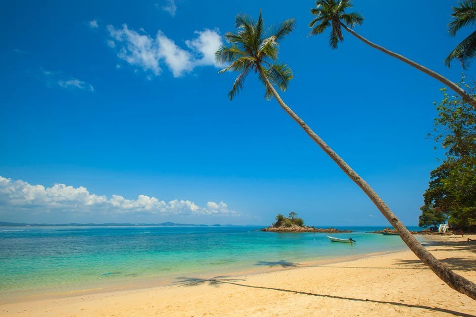 Tropical Beach at easy-moneys.com