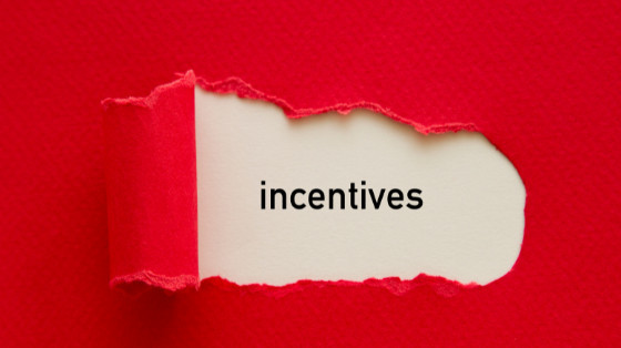 Incentives to Being an Entrepreneur