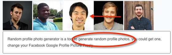 Random Profile Generator