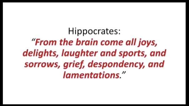 Millionaire's Brain Academy Hippocrates