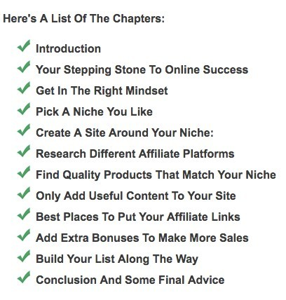 Affiliate Marketing Action Plan Chapters