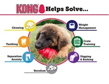 Kong Classic is one of the most durable chewing toys for dogs