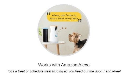 Furbo Working With Alexa