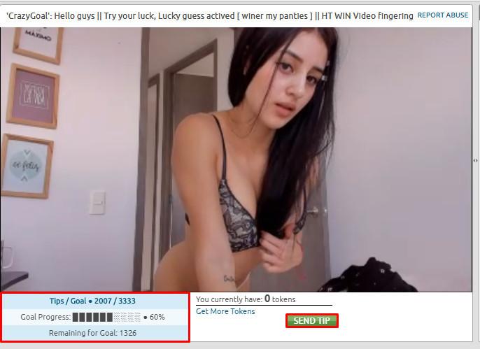 webcam startup business