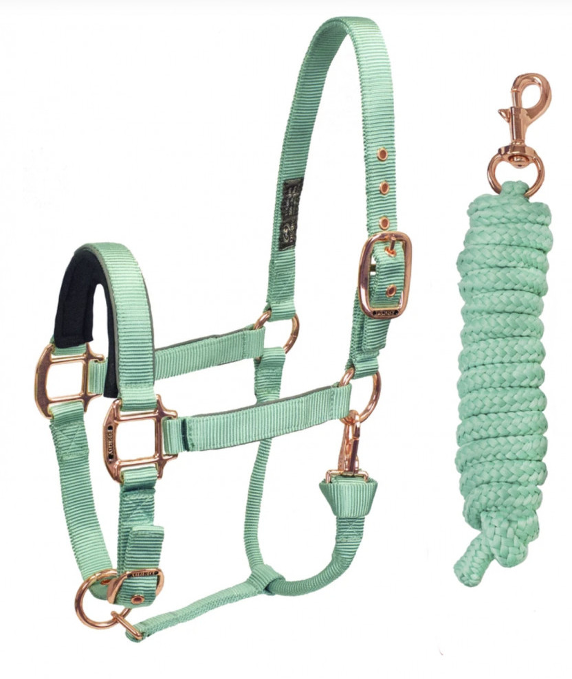 Mint Green Horse Halter and Lead Rope