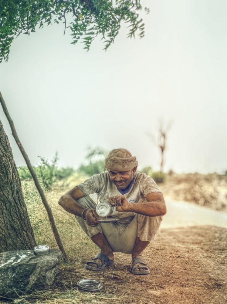 an aborigine collecting tea tree oil