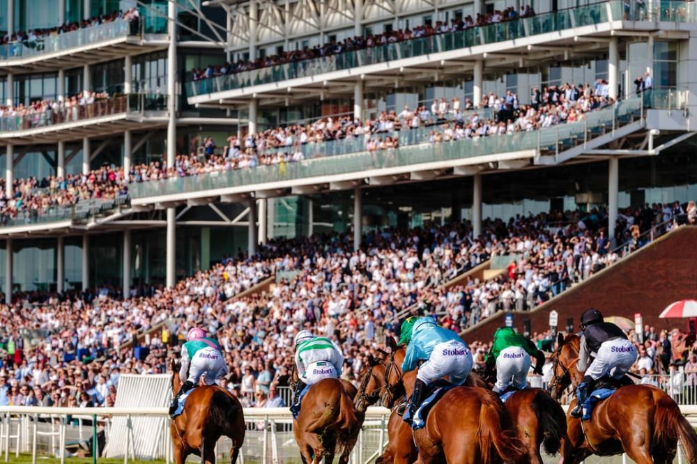 horse racing course