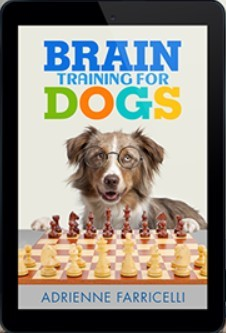 Brain Training for Dogs Course