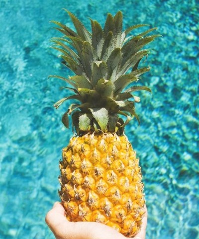 Pineapple Core is the Best Source of Bromelain