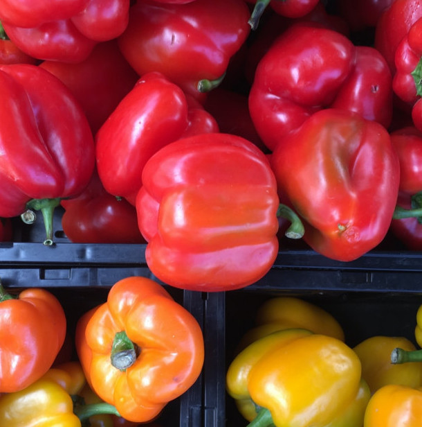 Bell peppers are high in Vitamin C