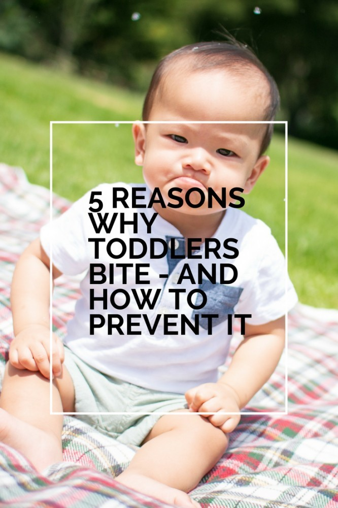 reasons-why-toddlers-bite
