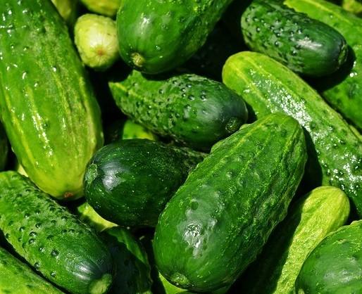 cucumbers 96.7% water