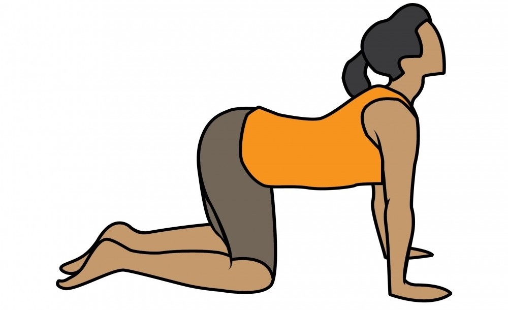 Person performing cow yoga exercises back pain